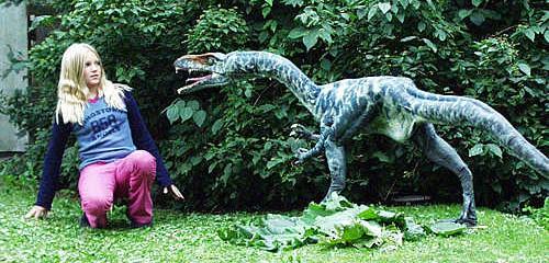 Dino and Tortoise